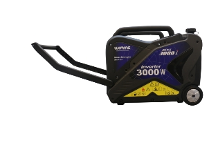 Worms Access 3000i, Generator (3000 W)